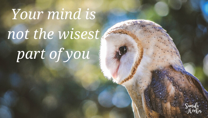 your mind is not the wisest part of you