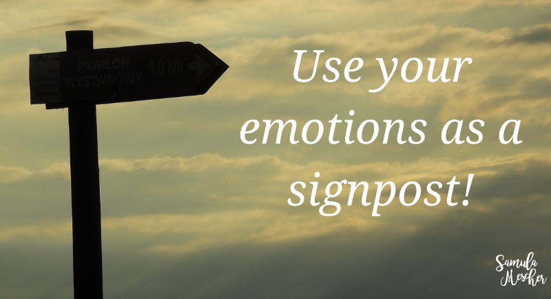 emotions as a signpost
